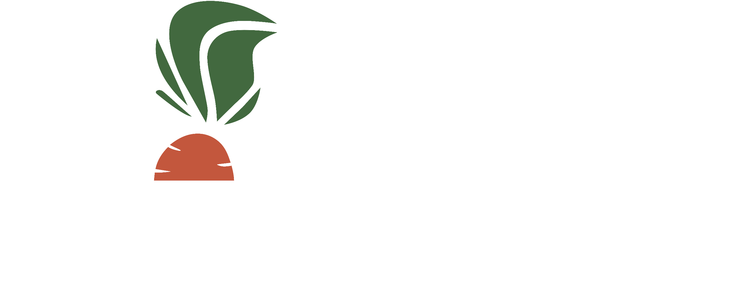 Snabbfoting Group AB